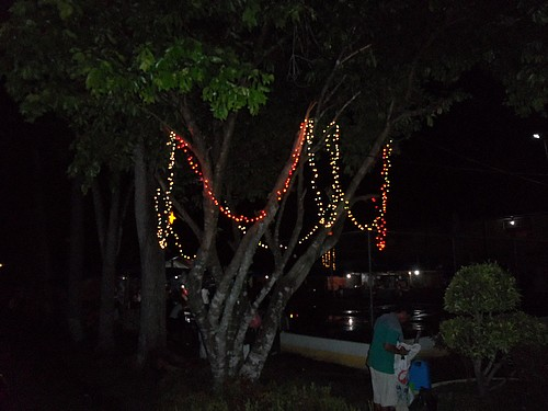 151218-makato-aklan-x-mas-decoration_004